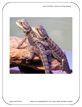 Lizards Art Drawing Lesson and ELA Literacy Circle K-5th Gr Reading Art Lesson