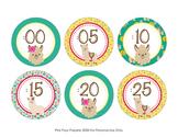 Llama Clock Number Labels