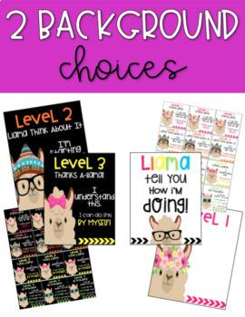 Llama Levels of Understanding