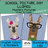 Llama Mystery Pictures, School Picture Day Fun! (English version!)