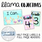 Llama Objectives Labels