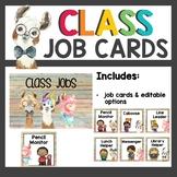 Llama Classroom Decor Job Cards