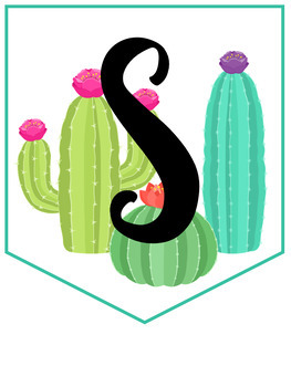 Llama and Cactus EDITABLE Bunting Banner Classroom Decor