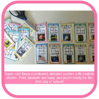 Llama Classroom Decor - Alphabet Posters