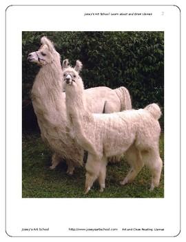 Llamas Art Drawing Lesson and ELA Literacy Circle Reading and Art Lesson