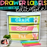 Llamas, Cacti, & Shiplap Sterilite Drawer Labels - Editable