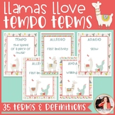 Llamas & Cacti Tempo Terms & Definitions Posters {Music Cl