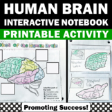 Lobes of the Brain Interactive Notebook, Supplements Human Body Systems Unit