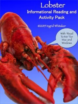 End of the Year Activities - All About Lobster!