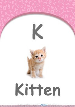 Location - Under : Letter K : Kitten - Pre-Nursery (1 year old)