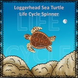 Sea Turtle (Life Cycle Spinner)