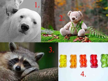 Which One Doesn't Belong? Logic Game for K 1st 2nd DEAF Hearing Impaired SPED