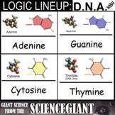 Logic LineUp: DNA Base Pairs Puzzle