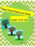 Logic Line Up: How Fruit Grows on a Tree NO PREP common core