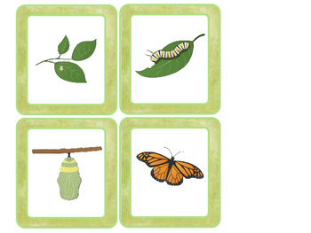 Logic Sequencing Cards (Montessori Inspired)