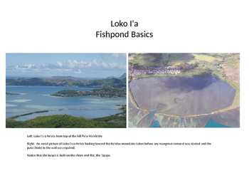 Loko I'a - Hawaiian Fishpond Basics