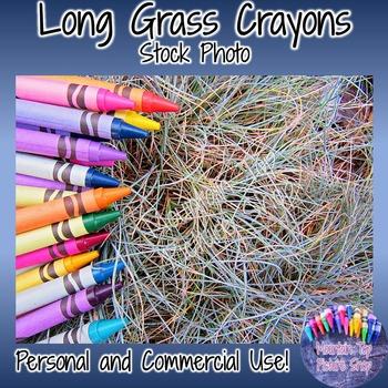 Long Grass Crayons (Stock Photo)