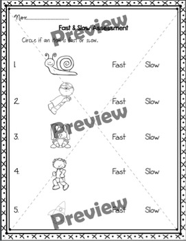 Fast/Slow Sorting {Worksheet/Center for Practice or Assessment}