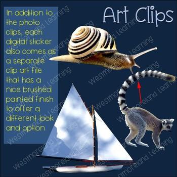 Long Vowel A Clip Art Phonics Set Photo & Artistic Digital Stickers