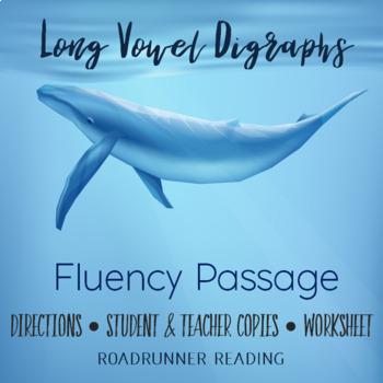 Long Vowel Digraphs Fluency Passage