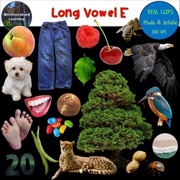 Long Vowel E Clip Art Phonics Set Photo & Artistic Digital Stickers