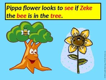 Long Vowel Flowers E-Book