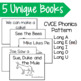 Long Vowel Mini Books- Silent E/CVCE
