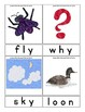 Long Vowel Vocabulary Picture Word Flash Cards - Self Checking- 84 Color 84 BW
