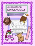 Long Vowel Review~Cut & Paste Worksheet