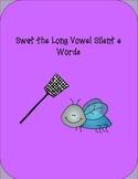 Long Vowel Silent e Words : Swat Game
