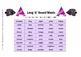 Long Vowel Sounds Word Set - Grades 3 - 6 or Special Educa