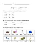 Long Vowel a Test