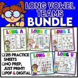Long Vowel Review Worksheets Practice - Digital & Print
