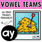 Vowel Teams 'ay' No Prep Phonics Printables
