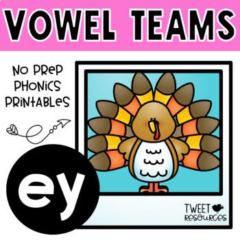 EY Vowel Teams No Prep Phonics Printables with Color Posters