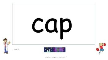 Long Vowels vs. Short Vowels Word Flip Chart (OG)