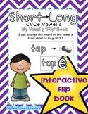 Long Vowel Patterns {Long a CVCe} Interactive Flip Book