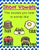 Short Vowels and Long Vowels Foldable and Activities