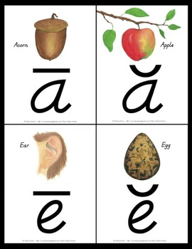 Long and Short Vowel Posters and Flash Cards {D'Nealian}