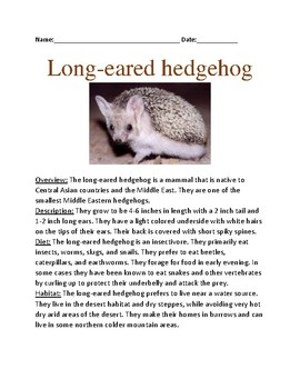 Long eared hedgehog - facts information review questions