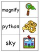 Long i (_y) Picture Word Match