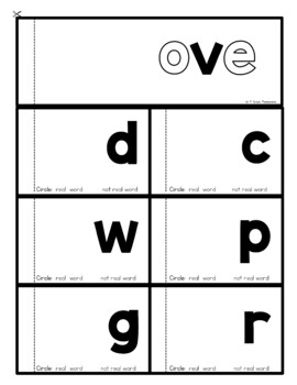 Long o (o_e, oa, ow, oe) Word Family FLIP Books