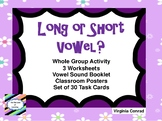 Long or Short Vowel?  Whole Group Activity and More