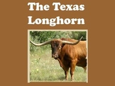 Longhorns PowerPoint Presentation