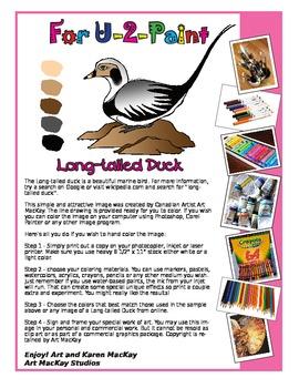 Longtail Duck 4-U-2 Paint - Classroom activity.