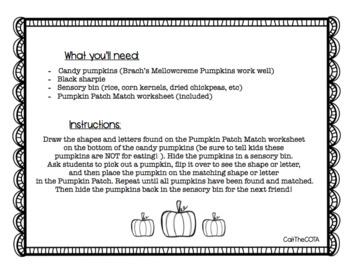 Look & Find Pumpkin Patch Match