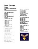 Look! There Are Bugs Song for Preschool/ Kindergarten