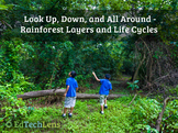Look Up, Down, and All Around- Rainforest Layers and Life Cycles PDF