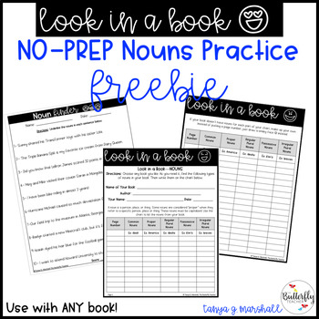 Nouns Practice FREEBIE