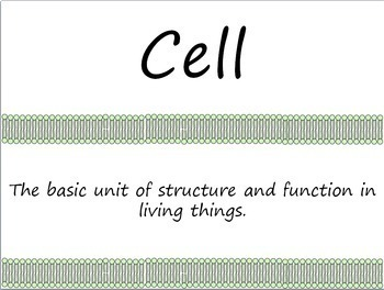 The Cell: Looking Inside Cells Word Wall Vocabulary Cards
